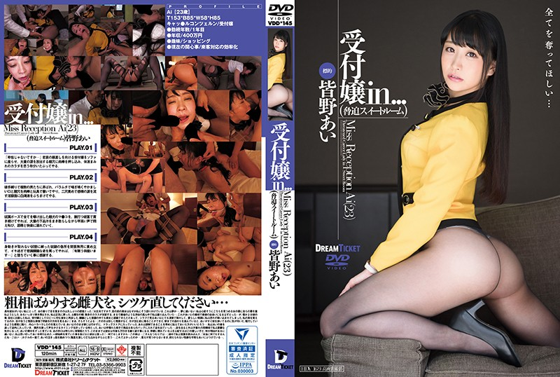 VDD-145 The Receptionist In... [The Coercion Suite] Ai Minano