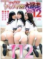 Danger! Rampage at the G-String Academy vol. 12 Download