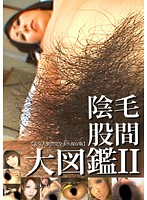 Video Encyclopedia Of Pubic Hair 2 Download