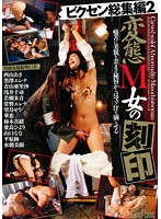 Vixen Complete Collection 2 Perverted Masochistic Girl's Impression Download