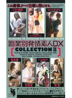 Horny Amateurs With All Kinds Of Jobs DELUXE COLLECTION 2 下載