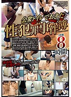 A File Of Sex Crimes That Occurred In Public Toilets 8 Hours Download