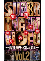 Super Harem Video Vol.2 ~Capture Office Ladies On The Way Home From Work~ Download