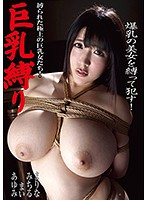 Tying Up Big Tits. The Finest Women With Big Tits In Bondage! Download
