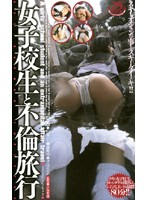Adultery Trip With a Schoolgirl 下載