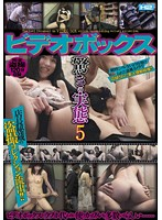 The Surprising Reality of Adult Video Arcades 5 下載