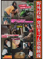 Outdoor Posting - Filthy Footage Of A Horny Couple 下載