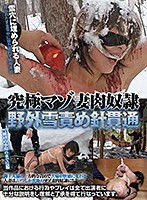 The Ultimate Maso Wife Sex Slave Outdoor Snowpiercing Penetration Download