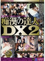 Master Molester DX 2 Download