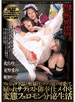 The Dirty Pheromone Laden Life Of A Vulgar Madam, Her Cute Masochistic Daughter, And The Maid That Provides Sadistic Services 下載
