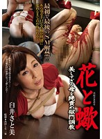 The Flower and The Scorpion - A Gorgeous Mother Broken In With Rope Bondage Torture - Satomi Usui Download