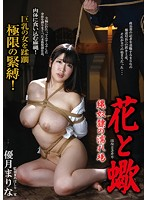 The Flower And The Scorpion: Bondage Slave Sex Scenes Marina Yuzuki Download