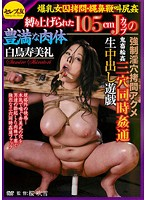 Torture a Girl with Colossal Tits: Tied Up Rape: 150cm J Cup Tits Amazing Body! Perverted Hole Torture & Orgasm! Rough Sex & Gang Bang Triple Penetration Creampie Raw Footage Sumire Shiratori Download