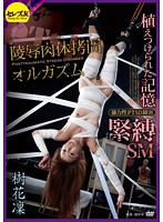 Planted Memories - V*****t Sex PTSD Sufferers - S&M A*****ted Bodies T*****e Orgasms - Karin Itsuki Download