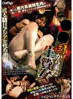 Tragedy Strikes A Girl Visiting Japan - The Sacrifice From xx Download
