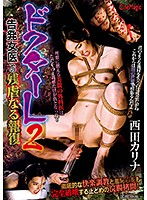 Doctor L2. The Cruel Retribution Against A Whistle-Blowing Female Doctor. Karina Nishida Download