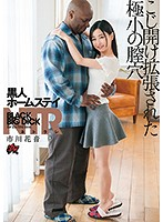 Black S*****t Homestay NTR Her Teeny Tiny Pusy Was Pried Open Wide Kanon Ichikawa