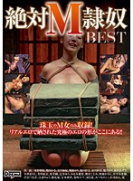 BEST OF Absolute Submissive Slaves Download