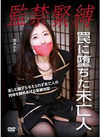 Confinement Bondage The Widow Who Fell Into A Trap 下載