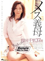 My Wild Stepmom Chisato Shoda 37 Years Old Download