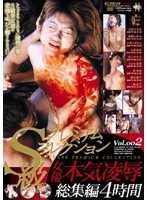 S-Type Premium Collection Female Actress Intensely Torture and Rape Highlights 4 Hours Download