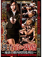 Treating A Shemale Investigator With Cruelty ~The Hellish Female Torture Stand~ Part 2: The Hole Of Rina Nojima. The Tragic, Convulsive, Wailing Orgasms Download