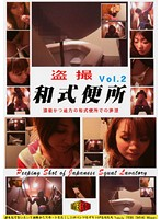 Peeping In A Japanese-Style Toilet vol. 2 Download