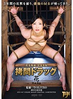 Completely Tied Up - Completely Dominated - Asshole Drug Hana Download