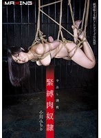 S&M Meat Slave Creampie Breaking In Michiru Ogawa 下載