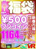 [VR] New Year Special! Amazing Offer - 500 Yen Lucky Bag 4 KVR 53 Titles, 1164 Minutes Download