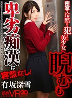 VR - Miyuki Arisaka - A Beautiful Y********l Gets Ruthlessly Ravaged In A Locked Room - Her Devious Assailant Shows No Mercy! Download