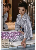 Steamy Passionate Hot Spring Vacation 2 下載