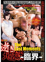 Orgasm Hell - Critical State - The Last Moments No.1 Nozomi Hara Download