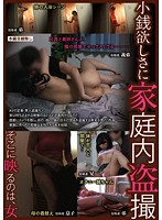 Home Voyeurism for Cash Download