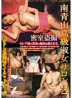 High Quality Lady From the South Aoyama 2. Sensually Teasing Massage. Download