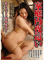 Domestic Night Visit Download
