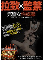 The Perfect Sex Slave Greatest Hits Collection Vol.02 A Video Record Of Barely Legal Abduction, Confinement, And Breaking In Download