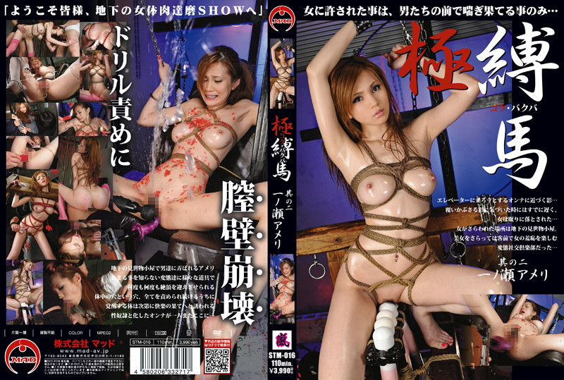 STM-016 Wild and Tied - Ameri Ichinose