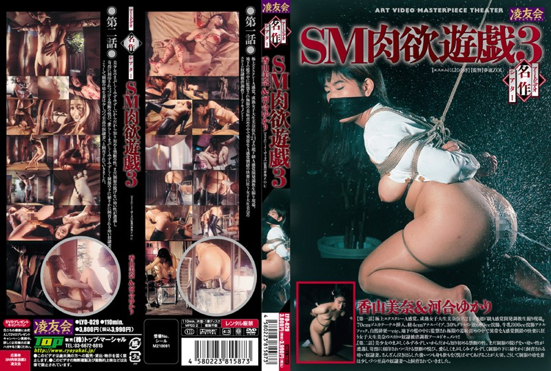 LYO-029 Art Video Masterpiece Theater: SM Lust Hot Plays 3 - Yukari Kawai, Shame, Mina Kayama, Enema, Confinement, BDSM, Anal Play