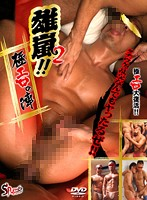 Stud Storm! 2 The Extremely Erotic Campaign Download