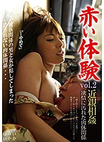 Red Experience Vol.2. Incest. Lustful And Dirty Sexual Relations Download