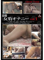 Peeping Girl Masturbation Vol. 1 - Women on All Fours Collection Download