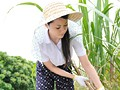 Sugarcane Field Mom Nana Aida preview-2