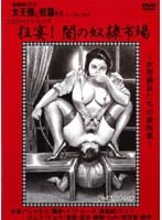 Genuine Masochists The Queen and Her Slaves Party Revelry! The Slave Town of Darkness Download