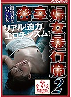 The Victim Is Always A Woman Sexual Abuse In A Locked Room 2 Download