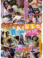 All-You-Can-Fuck While She Cleans Home Delivery Mama 2 Download