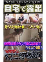 Exhibitionism At Home!? Girls Who Want To Show Off (6) - Exhibitionist Flashes Her Tits At The Door! The Paperboy Is Shocked! 下載