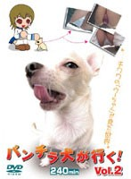 Taking Panty Shots With A Camera Fixed On The Dog's Collar ! vol. 2 Download
