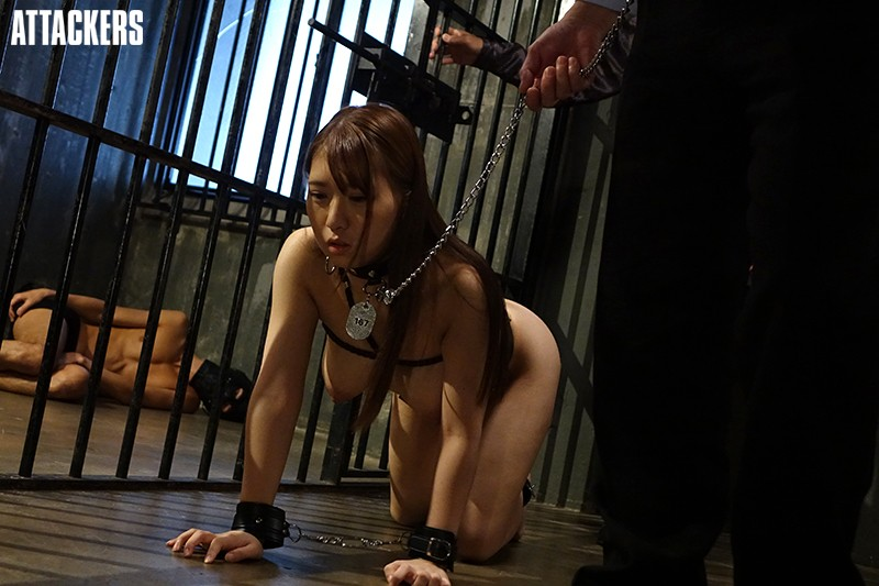 [RBD-925] Slave-Colored Stage 45 Sari Kosaka