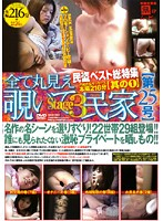 All POV Voyeur Private House [Issue 25] stage 3 Download
